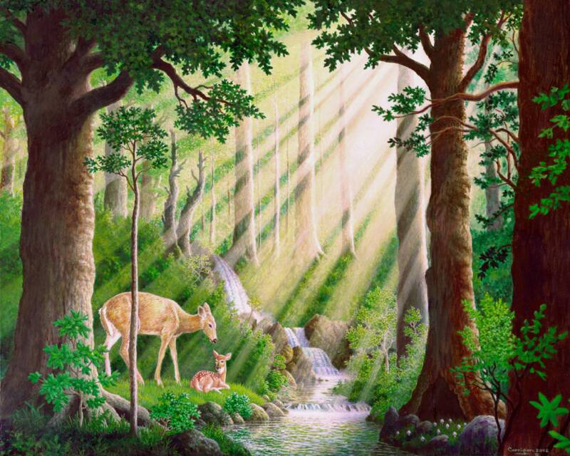 "Prints of ""Woodlands Mother and Fawn"" are available"