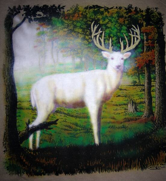 Albino deer, in color,, T-shirt design © David Carrigan