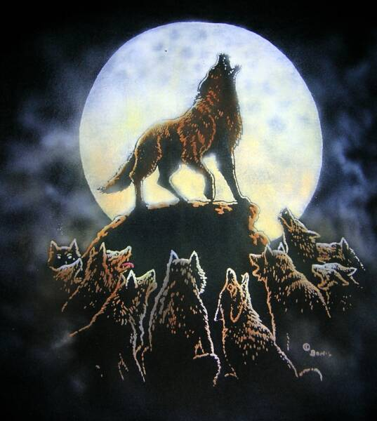 Wolves, in color on black T, T-shirt design © David Carrigan