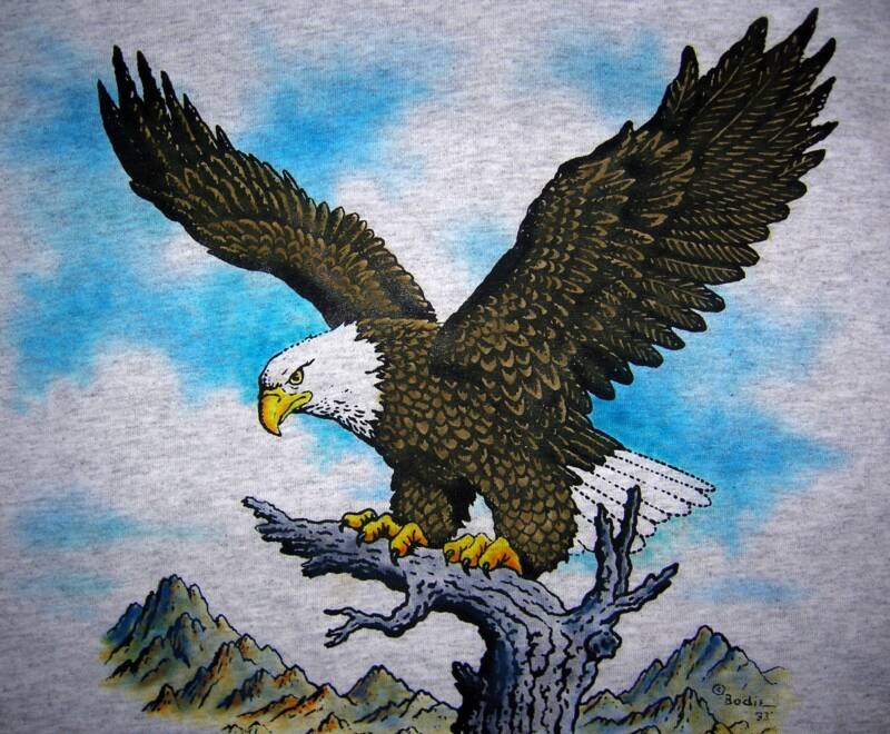 Eagle,  in color on ash T, T-shirt design © David Carrigan