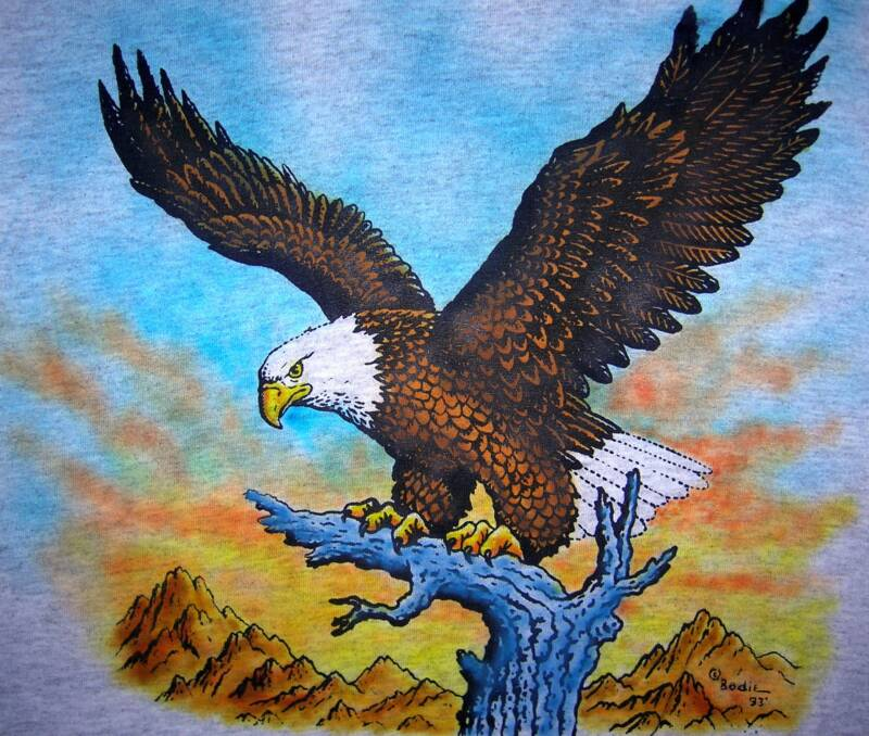 Eagle with Sunset,  in color,T-shirt design © David Carrigan