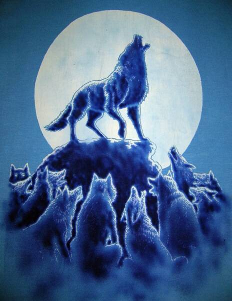 Wolves, in color on blue T, T-shirt design © David Carrigan